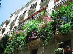 Balcon fleuri - Flickr - MlleMiracle