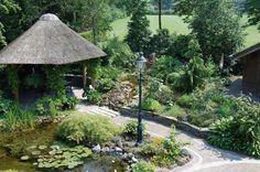 Bestratingen Japanse tuin Natuurlijke vijver met trap Pergola's Schanskorven Strakke moderne stijl met vijver Overige Trap, Water Garden, Zen, Plants, Planters, Water Gardens, Plant, Planting