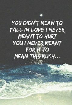 you didn't mean to fall in love i never meant to hurt you i never meant for it to mean this much....