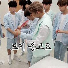 Woozi, Wonwoo, Jeonghan, Yoseob, Lee Jihoon, Xiu Min, B1a4, Kaisoo, Seungkwan