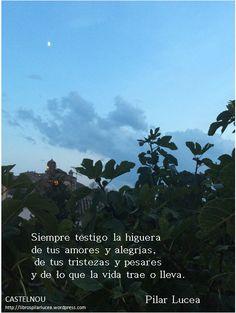 Castelnou. Pilar Lucea