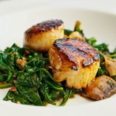 Scallops ~ Seared Scallops with Apple Cider-Balsamic Glaze {recipe} Fish Recipes, Seafood Recipes, Paleo Recipes, Great Recipes, Cooking Recipes, Cooking Tips, Tilapia Recipes, Cooking Food, Recipes Dinner