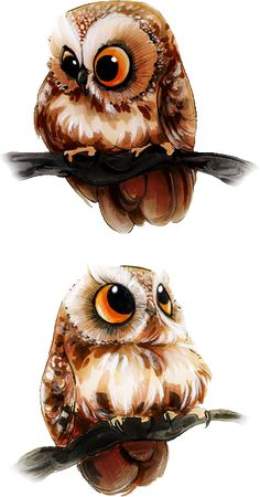 Ideas drawing animals owl illustrations for 2019 Cute Animal Drawings, Cute Drawings, Cute Owl Drawing, Owl Drawings, Drawing Animals, Owl Illustration, Illustrations, Art Mignon, Owl Pictures