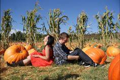 Pumpkin patch engagement photos