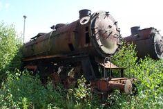 Eine der sechs BR 44 und 52 8100 der Loksammlung Falz am 12.09.09 im ehemaligen BW Falkenberg oberer Bahnhof. Germany