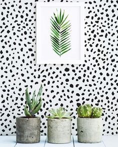 It's #GIVEAWAY TIME! Enter the contest to WIN 4!!! YES 4 ROLLS of this trendy Dalmation spot WALLPAPER! ▼▲▼▲▼ ▲▼▲▼ How to? 1.Go to Livettes wallpaper #facebook page 2.Search for GIVEAWAY post 3.LIKE and SHARE this post ▼▲▼▲▼▲▼▲▼ That's all you need to do! Livettes will announce the winner on March 30. Good luck!