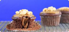 Candy Bar Cupcakes by Chocolate Covered Katie Healthy Candy, Healthy Vegan Desserts, Vegan Treats, Healthy Food, Vegan Recipes, Vegan Cupcakes, Vegan Cake, Chocolate Cupcakes, Fun Baking Recipes