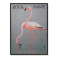 designdelicatessen ApS - Poster - Zoo Flamingo - Poster