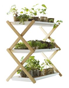 Thinking I could make something like this from my old clothes rack. Perfect for starting seeds or growing herbs. Garden Shelves, Plant Shelves, Outdoor Plants, Outdoor Gardens, Indoor Gardening, Wood Pallet Planters, White Tray, White Home Decor, Small Plants