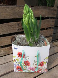 Ever thought of using giftbags as decoration? These flower giftbags of Janneke Brinkman will look very nice with flowers and plants. Janneke is licensed by Orange Licensing.