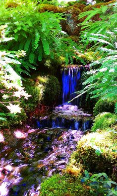 Waterfall. Path in Japanese Garden. Butchart Garden.  Artlady's Blog