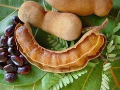 """Sampaloc 