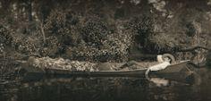 FOTOGRAFÍAS TRUPPE Fledermaus