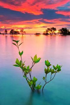 Lovely sunset in Australia