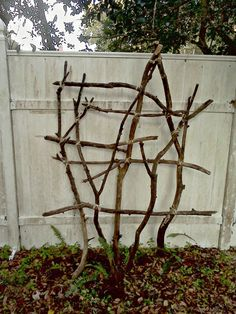 Pinner said: This is a trellis that my son and I made from tree prunings. We used sisal rope to bind the branches together. I wanted something very natural for this corner of our woodland garden. We've planted it with clematis. Garden Oasis, Garden Sheds, Tree Pruning, Growing Roses, Woodland Garden, Diy Garden Projects, Climbing Roses, Garden Trellis, Garden Structures