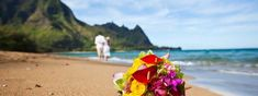 Get information on planning a destination wedding along with destination wedding tips, destination wedding locations, trends and advice. All Inclusive Destination Weddings, Hawaii Wedding, Travel Agency, Wedding Tips, Caribbean, Cruise, Mexico, Vacation, Marriage Tips