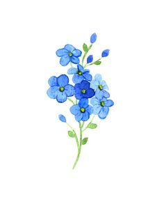 Ideas Flowers Blue Tattoo Forget Me Not Watercolor Flowers, Watercolor Paintings, Watercolors, Watercolor Tattoo, Pond Painting, Drawing Flowers, Painting Flowers, Future Tattoos, New Tattoos