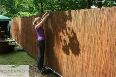 Wicker mats are available in different heights. With a height of 180 c . Diy Room Divider, Royal Brides, Save The Planet, Cladding, Fence, Wicker, Wood, Bamboo Fence, Divider Screen
