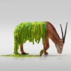 Dollar Store Animals by Doug Pedersen // melted colorful crayons