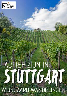 Doen in Stuttgart: Loop door de Wijngaarden - The Travel Tester