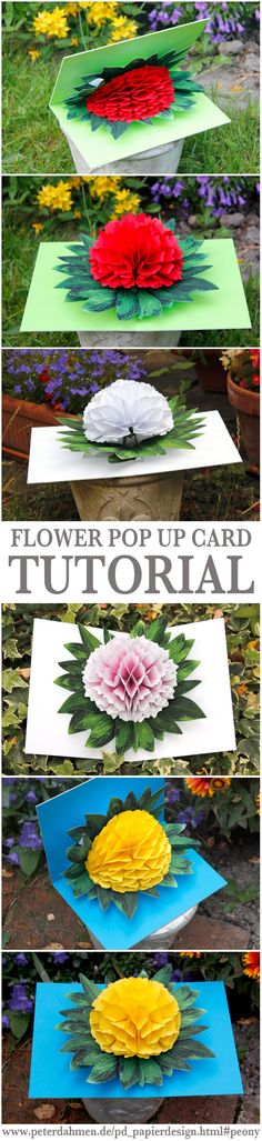 Flower Pop Up Card Tutorial by Peter Dahmen. Link also includes a lot of other creative pop up ideas! Flower Crafts, Diy Flowers, Paper Flowers, Flower Diy, Fun Crafts, Diy And Crafts, Paper Crafts, Card Crafts, Craft Gifts