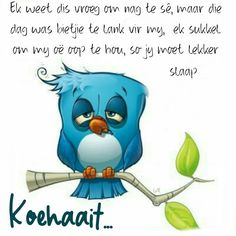 Evening Greetings, Goeie Nag, Goeie More, Night Quotes, Afrikaans, Good Night, Mornings, Encouragement, Cartoons