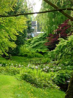 Japanese Garden at Norrviken gardens (Norrvikens Trädgårdar) outside Båstad