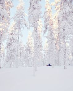 Cause sometimes the search for perfect sights is most fun! 😍👌❄💙 Snowmobiling in Finnish Lapland! Will be out for few days in search for… Lapland Finland, Search, Fun, Outdoor, Instagram, Outdoors, Searching, Outdoor Games, The Great Outdoors
