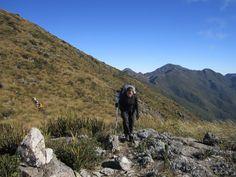 Foto 4 - BRASIL - Trekking Serra Fina - Ney Bachega.
