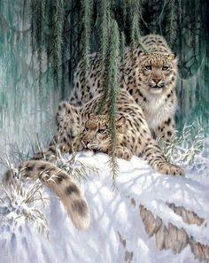 Magical Nature Tour Snow Leopards
