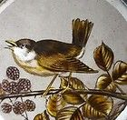 VERY SPECIAL PAINTED BIRD ANTIQUE STAINED GLASS WINDOW