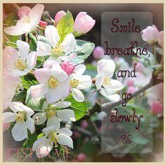 #blossom #smile #breathe #flower