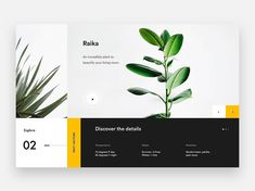 """986 Me gusta, 6 comentarios - UI/UX (@ui__ux) en Instagram: """"from @nicola.baldo - Trying new compositions and new colors. I love the result of this shot. Raika…"""""""