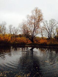 A beautiful photo of autumn in Semey, Kazakhstan