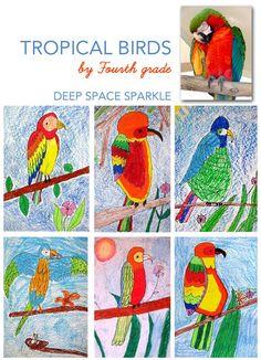 Oil Pastel Parrot Art Project | Deep Space Sparkle