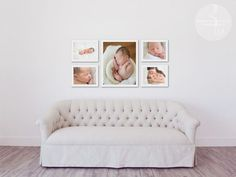 Newborn wall portrait collection.