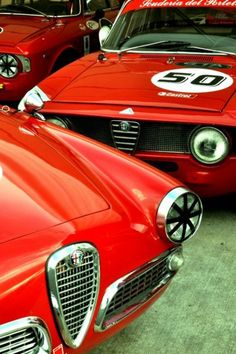 Alfa-Romeos. You cannot call yourself a true petrolhead until you own an Alfa.