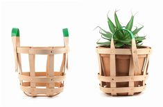 Cool Hunting Edition: byAMT Strap Planter