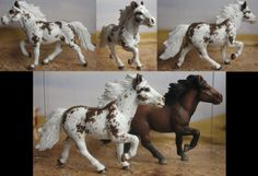 The bay is a special edition Icelandic stallion, it's been customized to be a paint