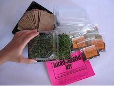 Micro-Greens Kit - Seed Refill