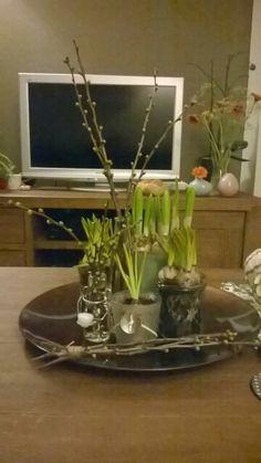 De lente op een schaal met voorjaarsbollen in allerlei verschillende potjes en vaasjes.