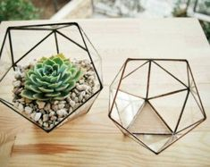 Items similar to Geometric Terrarium / Crystal / Stained Glass Terrarium / Handmade Glass Planter / Stained glass vase on Etsy Glass Planter, Glass Terrarium, Planter Boxes, Small Terrarium, Terrarium Centerpiece, Glass Cactus, Terrarium Diy, Glass Vase, Terrarium Containers