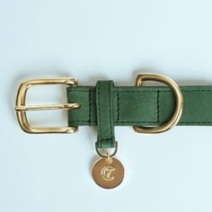 Dog Collar ~ Green Leather and Brass | Cloud 7
