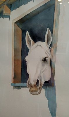 Horse, dog and cat portraits in watercolor and/or pencil | By My Hands Only