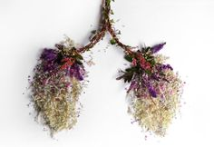 camila carlow sculpts human organs from foraged flora - designboom | architecture