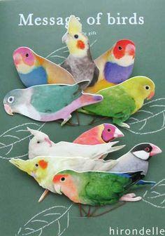 Message of birds(ギフトタグ)