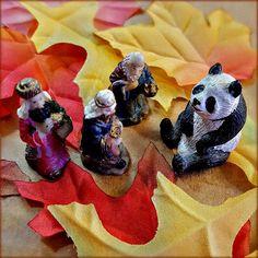 Schlep of the Magi Begins Again (11/29/15) and already the Magi encounter unexpected panda...monium.