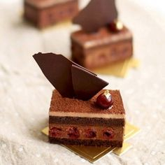 black forest entremet ....  dark chocolate and kirsch soaked cherries