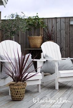 Silver weathered timber for decking