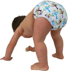 Planet Bambini  - Cloth Diapering 101 Class, $10.00 (http://www.planetbambini.com/cloth-diapering-101-class/)    No amount of researching online or chatting to friends who use cloth can compare to actually getting down and touching them yourself. Go to a class and see what it's really all about!